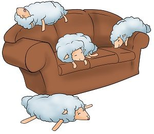 a-sheep-is-asleep-on-my-sofa