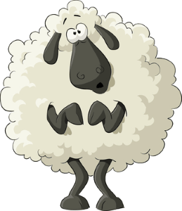 my-sheep-is-being-sheepish